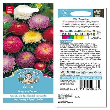 Mr. Fothergill Aster Pompon Mixed seeds available from Strawberry Garden Centre, Uttoxeter