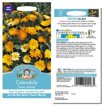 Mr. Fothergill Calendula Daisy Mixed Seeds available from Strawberry Garden Centre, Uttoxeter