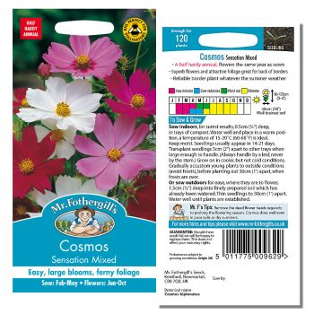 Mr. Fothergill Cosmos Sensation Mixed Seeds available from Strawberry Garden Centre, Uttoxeter