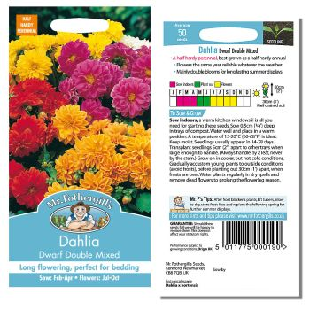 Mr. Fothergill Dahlia Dwarf Double Mixed Seeds available from Strawberry Garden Centre, Uttoxeter