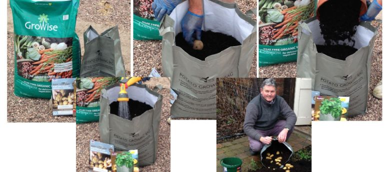 Seed Potatoes Time to Plant with Strawberry Garden Centre, Uttoxeter