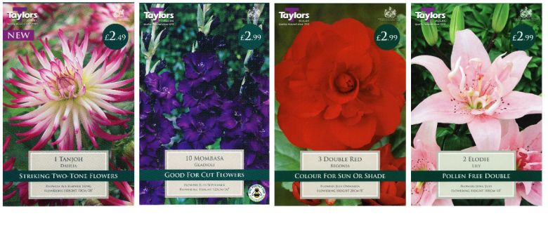 Summer flowering Taylors Bulbs available from Strawberry Garden Centre, Uttoxeter