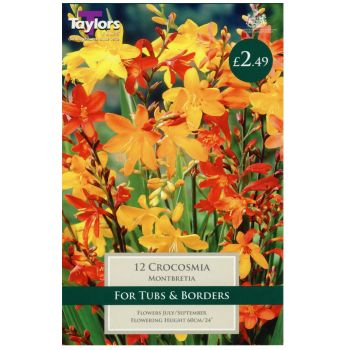Taylors Bulbs TS761 Montbretia (Crocosmia) available from Strawberry Garden Centre, Uttoxeter