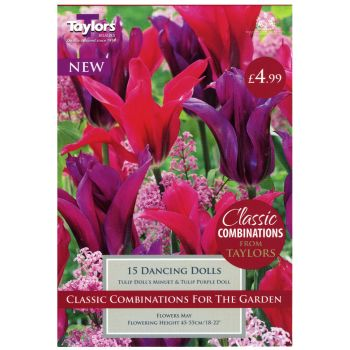 Taylors Bulbs CC108 Classic Combinations Dancing Dolls available from Strawberry Garden Centre, Uttoxeter