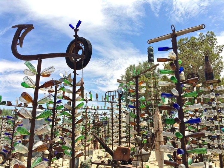 No need to water these glass trees although you will find plenty of real ones sprinkled throughout the ranch which helps cool down your journey as you explore his beautiful creations.