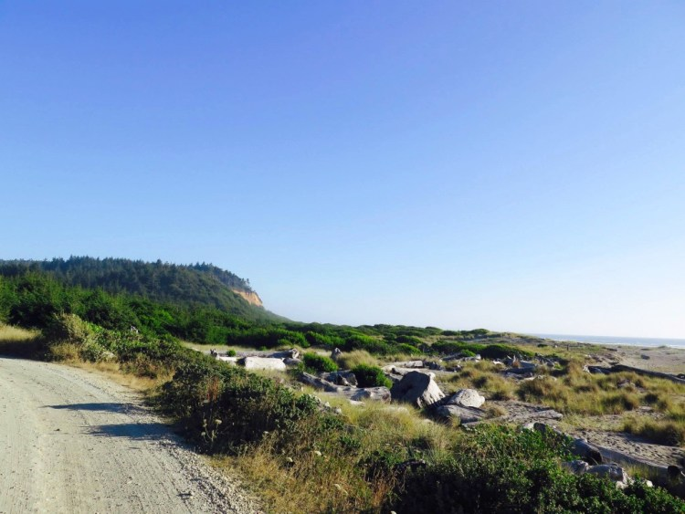 Gold Bluffs Beach is a beauty— eleven miles of wild, driftwood-littered shore, backed by extensive dunes. Sand verbena, bush lupine, and wild strawberry splash color on the sand.