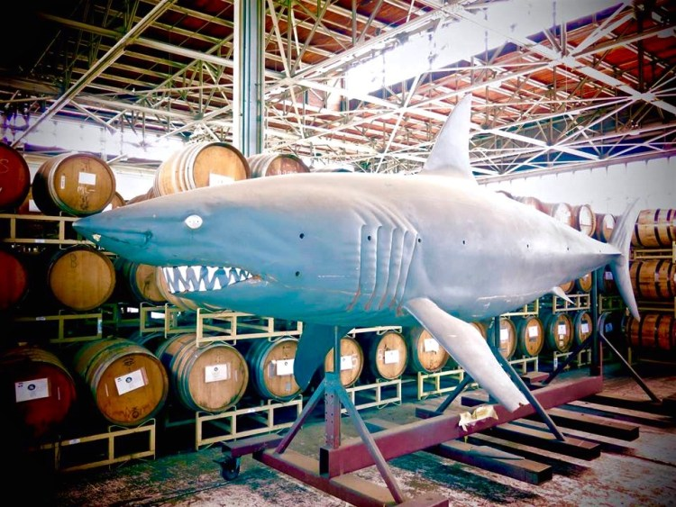 Hanging out in the distillery is an animatronic shark mold from the hilariously-bad-it's-good movie, Deep Blue Sea.
