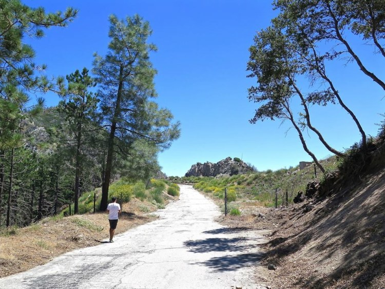 As you approach the peak of Mt. Disappointment you begin to see the area that made up the old NIKE missile site.