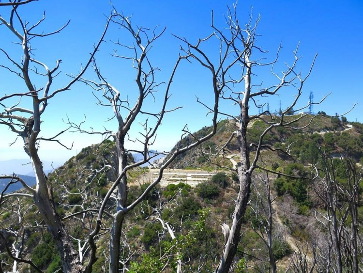 Launch site peek on the way up to San Gabriel Peak.