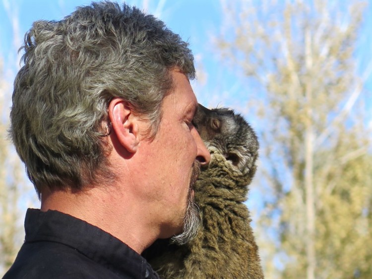 Using only positive reinforcement training methods, the bond between trainer and animal is strong.