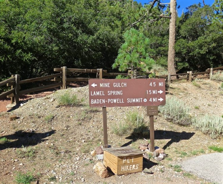 This is a general parking lot for many other hikes in the region, including Mt Baden-Powell and the PCT. Be sure to take the trail heading left.