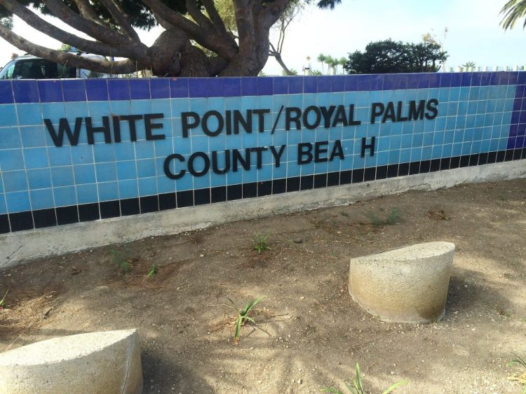 Welcome to White Point Nature Preserve...