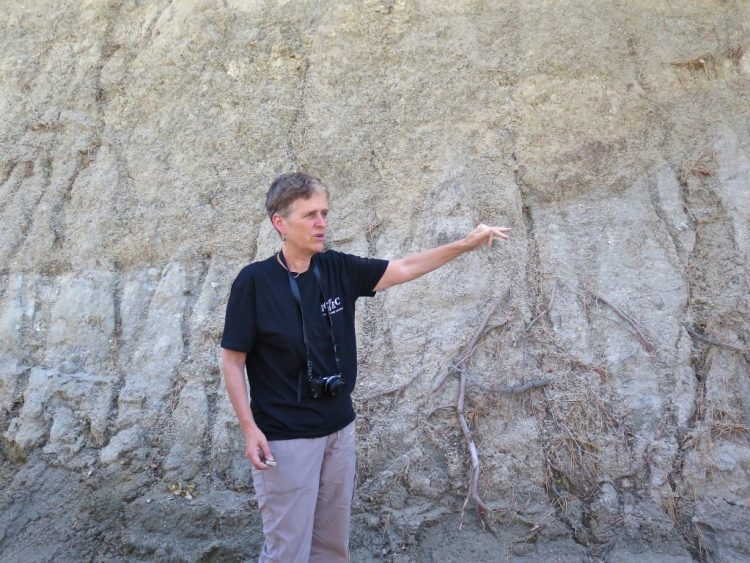 """Rock that has been ground to a fine powder or clay along faults is known as """"fault gouge""""."""