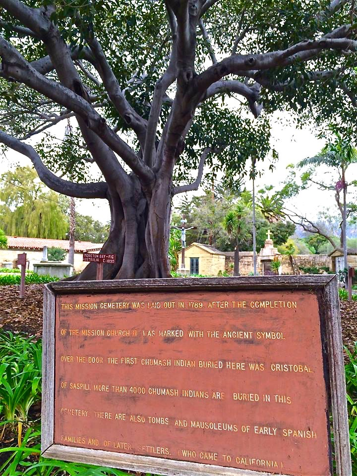 Mission Santa Barbara was officially established on December 4, 1786. However, the mission cemetery was not established until 1789. Most of the bodies interred at the mission were indians. According to the registers, a total of 4,645 indians were buried here.