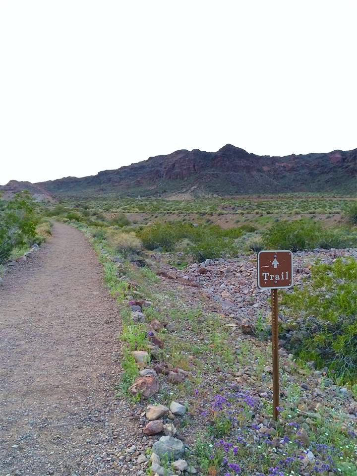 The best place to begin your trek is the Lake Mead National Recreation Area Alan Bible Visitor Center trailhead.