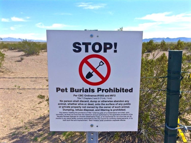 Since this is an unsanctioned illegal pet cemetery, signs have been placed at the front of the gate warning people that pet burials are prohibited. Obviously these signs continue to be ignored since recent burials can be found throughout the 3-acre site.