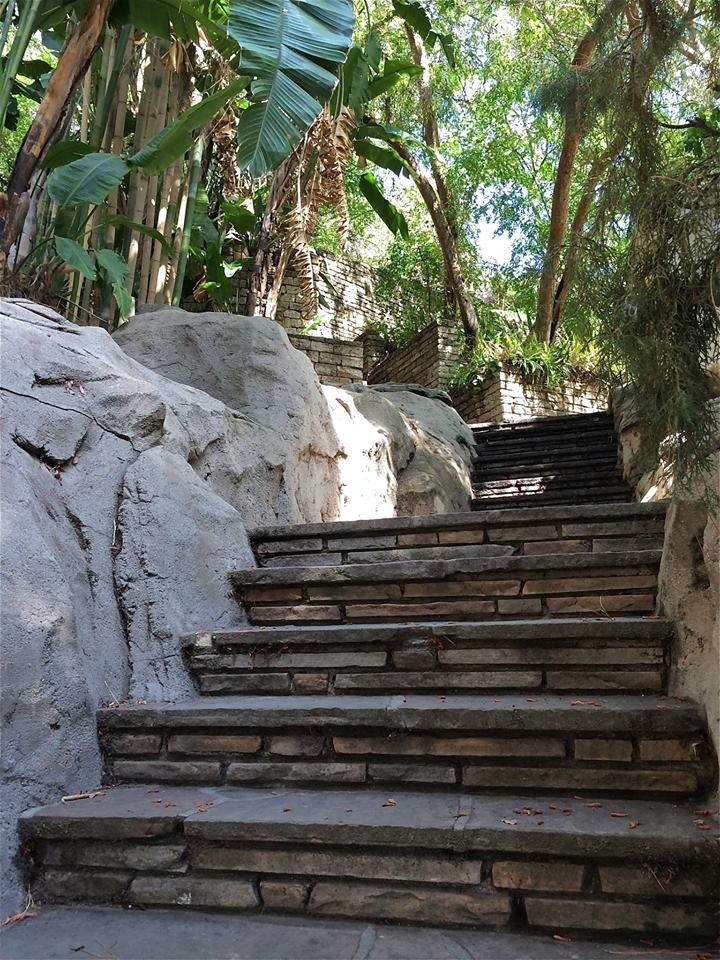 Rocky/stone stairs....AGAIN!