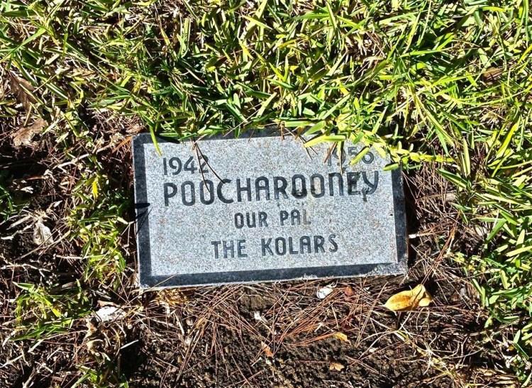 ...and Poocharooney...