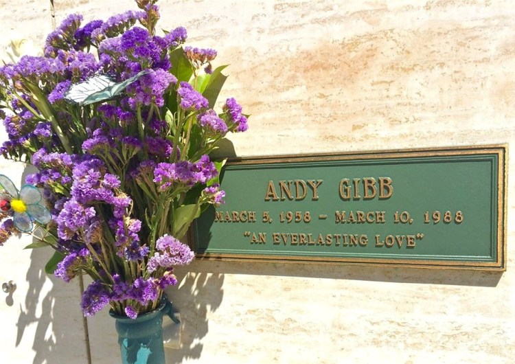 """Andy Gibb (1958-1988) - the youngest brother of the Bee Gees, became an overnight sensation during the Disco era, at a time when his brothers' group was dominating the airwaves with their """"Saturday Night Fever"""" soundtrack. Andy had a string of huge solo hits during the late 1970's, which included """"Shadow Dancing,"""" """"(Love Is) Thicker Than Water,"""" """"Everlasting Love,"""" and """"I Just Want to Be Your Everything."""" Having abused drugs and alcohol heavily in the past, he swore it off when he had his 30th birthday, but it was too late. He died of a sudden heart infection just five days later."""