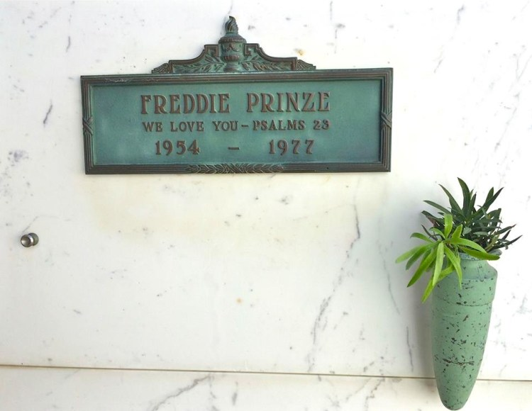 """His future looked bright as the star of """"Chico and the Man"""", but he was apparently fighting inner demons. Freddie shot himself at age 23, adding to the long list of Hollywood stars who died young. RIP"""