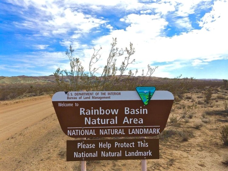 You never heard of Rainbow Basin Natural Area? Me neither until one of my fellow explorers turned me on to it.