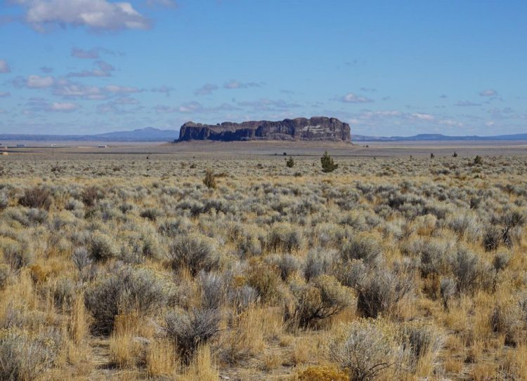 Like a desert mirage, this National Natural Landmark rises huge out of the barren, immense flatness of Oregon's high desert.