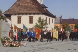 70 rocznica zakończenia II Wojny Światowej - Pilica 2015 (145)
