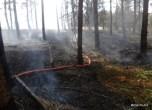 Pożar lasu w Solcy - 23.08.2015r (4)