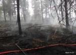 Pożar lasu w Solcy - 23.08.2015r (5)
