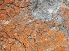 Rocks 5