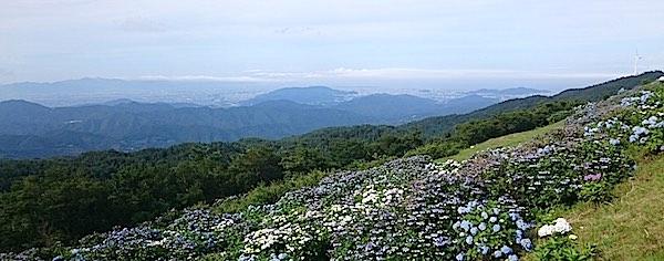 大河原高原 徳島方面眺望