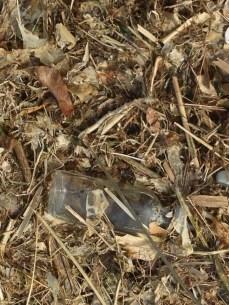 bottle litter