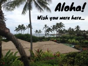 Kauai 2013_007