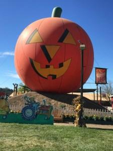 Pumpkin Patch_Jack-o-Lanturn_10-08-14