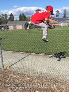 Fence Climbing