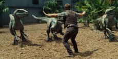 Chris Pratt trains the raptors in 'Jurassic World,' the latest in the dinosaur theme park series, directed by Colin Trevorrow.