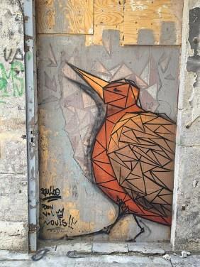 bulbe oiseau