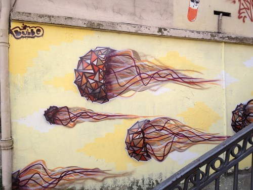 bulbe meduse