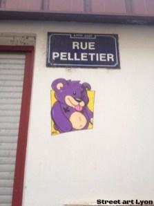 shadee-k rue pelletier (lyon 4)