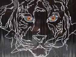 Ein Tiger aus weißen Linien auf schwarzem Grund