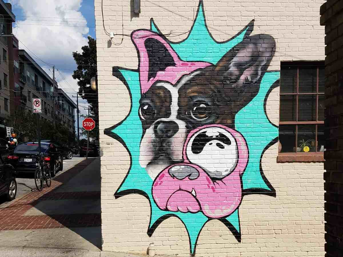 Street art featuring a French Bulldog by artist sQuishiepuss