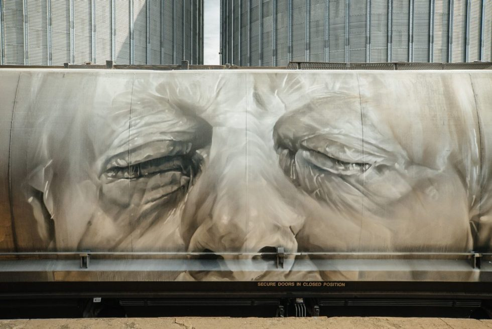 Salt Of The Earth by Guido van Helten