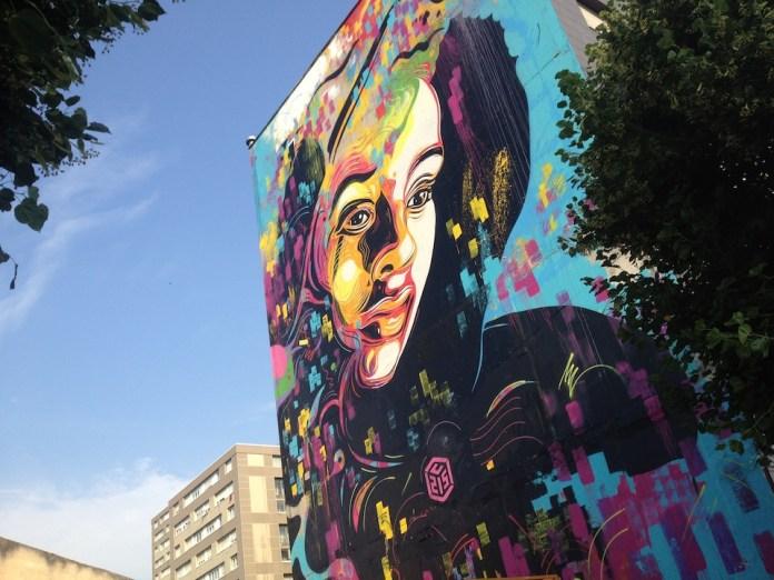 Street Art by c215 in Ivry, France 2