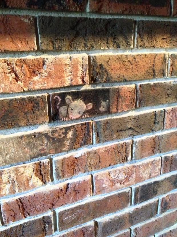 Street Art by David Zinn in Michigan, USA