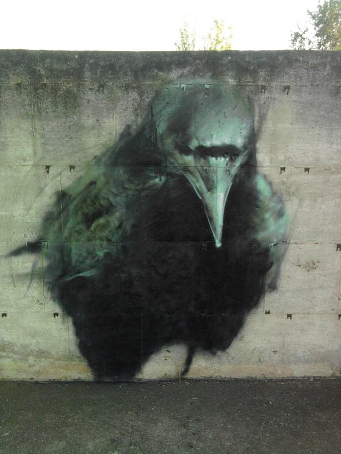 Ravens by Mesa 1