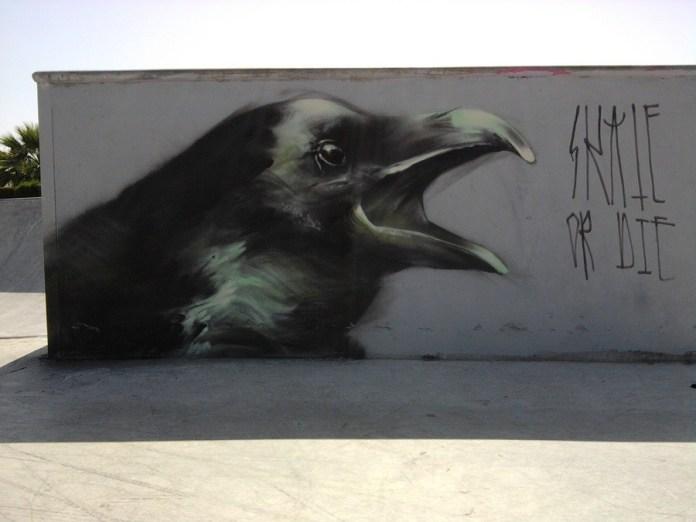 Ravens by Mesa 2