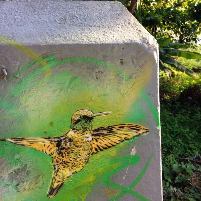 Street Art by C215 in Nine Mile, Jamaica 9