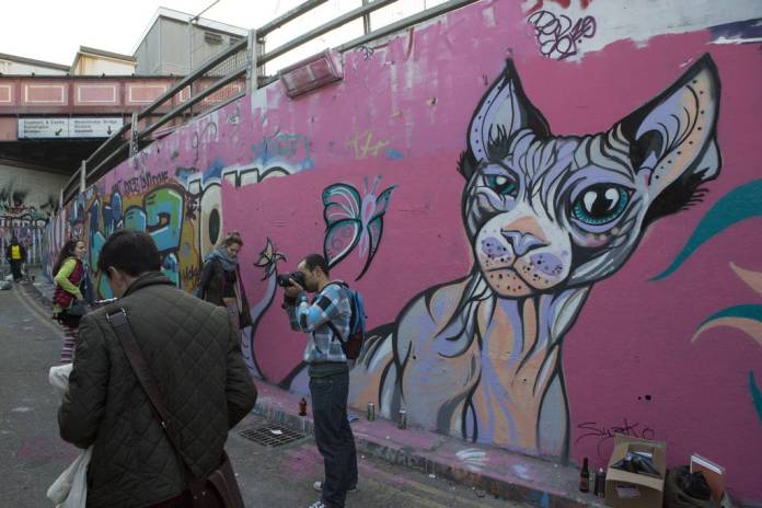 A mural of a cat, by Susie Lowe:Suzko 2