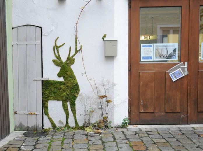 Moss Graffiti by Carly Schmitt