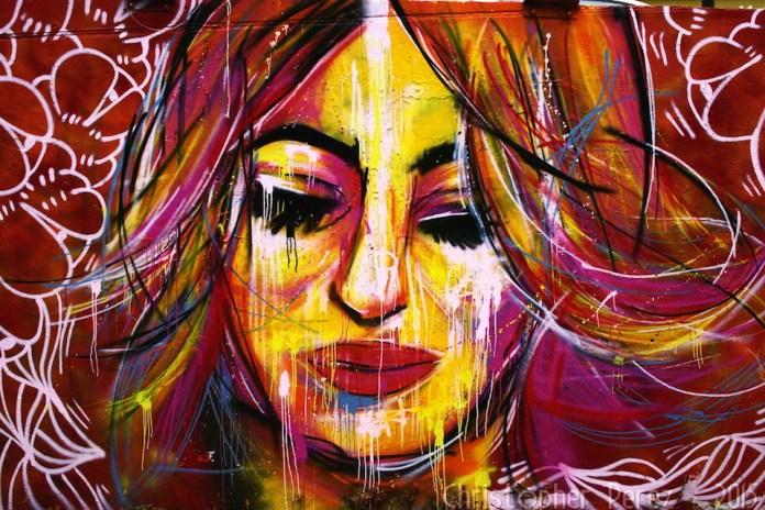 Street Art in Paris, France 343 2